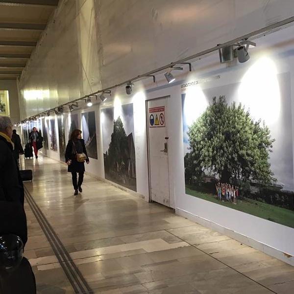 L'Arbre de l'année est en gare de Lyon